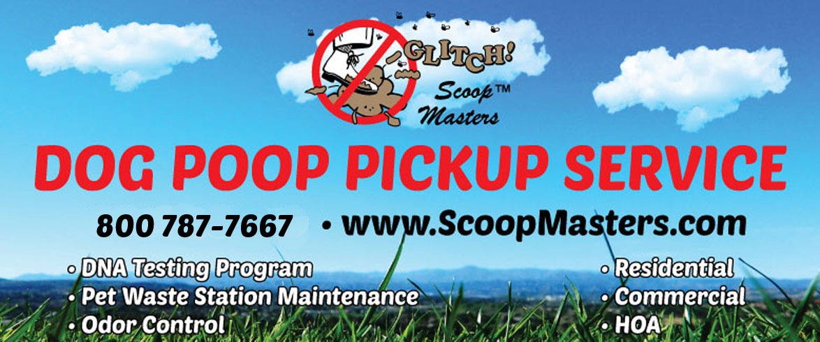 image of pooper scooper service in dallas/fortworth texas